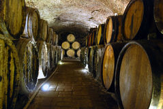 Wine cellar Stock Photos