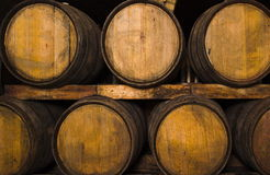 Wine-cellar Royalty Free Stock Image