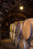 Wine-cellar Royalty Free Stock Images