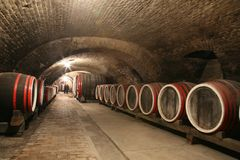 Wine cellar. An old wine cellar with barrels Royalty Free Stock Image