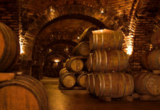 Wine-cellar. Barrels in a wine-cellar Royalty Free Stock Photo