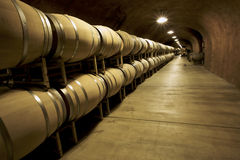 Wine Cellar. Unusual perspective in a wine cellar facing the ceiling Stock Photos