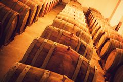 Wine Cellar. Three rows of casks in a wine cellar Royalty Free Stock Image