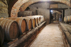 Wine cellar. Barells of wine in row. Wine factory in Piedmont,  italy Stock Image