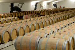 Wine cellar. With wine barrels Royalty Free Stock Images