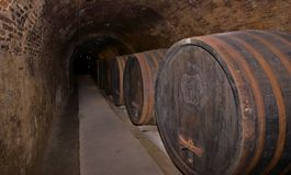 Wine cellar. Picture of a wine cellar - long row of wooden casks can be seen Stock Photo