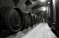 Wine cellar. Of a winery, wooden barrels in row Royalty Free Stock Photo