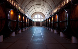 Wine Cellar. Stock Photography