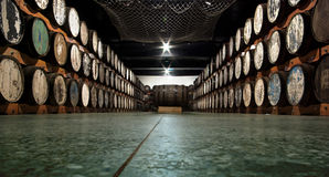 Wine cellar. Huge cellar with wine (or other liquor) barrels at the sides stock photo