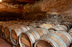 Free Wine Cellar Royalty Free Stock Photography - 5697347