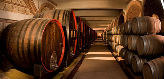 Wine cellar. One of the biggest wine cellars in South-East Europe Stock Image