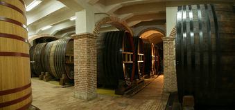 Wine cellar. One of the biggest wine cellars in South-East Europe Royalty Free Stock Photo