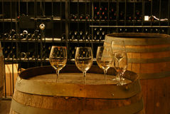 Free Wine Cellar Royalty Free Stock Photos - 6942028