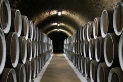Wine cellar. Wine barrels in cellar with casks along the walls Royalty Free Stock Photos