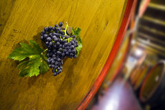 Wine cellar. Foreground of a bunch of grapes on a large oak casks in a cellar Royalty Free Stock Photography