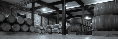 Wine cellar Stock Photos