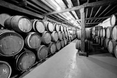 Wine cellar with barrels Stock Images
