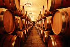 Wine cellar with  barrels Royalty Free Stock Photos