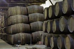 Wine cellar with  barrels Stock Photo