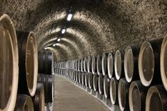 Wine cellar barrels Royalty Free Stock Photos