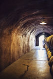 Wine cellar. Wine barrels inside cellar of a vinery Royalty Free Stock Photography