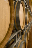 Wine cellar with barrique barrels Royalty Free Stock Photo