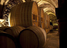 Wine cellar with big barrels. Wine cellar old building with large barrels for storage of fine wines Royalty Free Stock Images