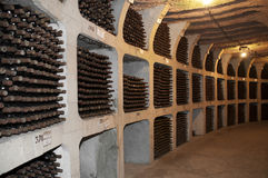 Wine cellar with the bottles Stock Photos