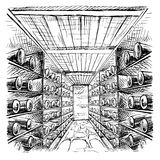 Wine cellar full of  bottles Stock Image