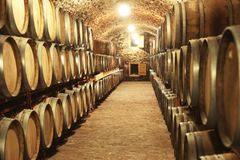 Wine cellar interior with large barrels. Wine cellar interior with large wooden barrels stock photography