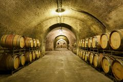 Old Wine Cellar with Wood Casks