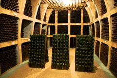 Wine cellar in Moldova Stock Photos