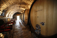 Wine cellar. An old cellar of a traditional wine producer Stock Photography