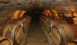 Wine cellar. An old cellar of a traditional wine producer Royalty Free Stock Photos