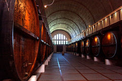 Wine cellar with old wine barrels Stock Image