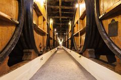 Wine cellar, Porto Royalty Free Stock Images