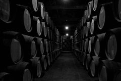 Wine cellar Portugal Stock Photography