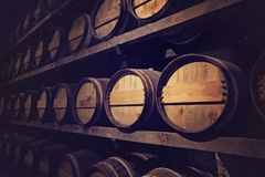 Wine cellar with a row of barrels. Austria royalty free stock photos