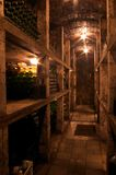 Wine Cellar in Slovakia. Wine cellar with bottles full of wine in southern Slovakia Stock Photography