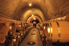 Wine Cellar in Spain. One of the most importan cellar wine in Spain, Ribera de Duero Royalty Free Stock Image
