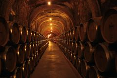 Wine Cellar in Spain. One of the most importan cellar wine in Spain, Ribera de Duero Stock Photography
