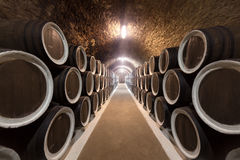 Wine cellar. Warehoused barrels in the wine cellar Royalty Free Stock Images