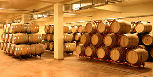 Wine cellar with wine barrels Stock Photography