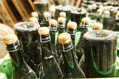 Wine and champagne production ageing at winery factory Royalty Free Stock Photos