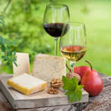 Wine and cheese Royalty Free Stock Image