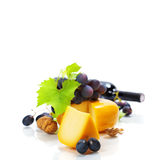 Wine, cheese and grape Stock Image