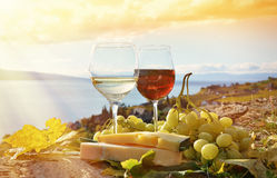 Wine, cheese and grapes Stock Image