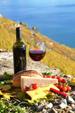 Wine and chese. Stock Photography