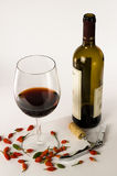 Wine and chili pepper Stock Images