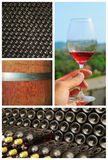 Wine collage. Stock Photo